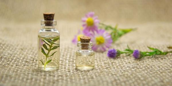 Terpene – Mehr als nur Aromastoffe