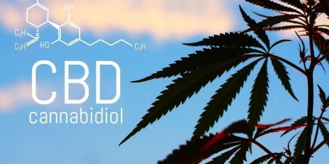 Alle CBD Produkte mit mehr als 8% CBD synthetisch? Eine kurze Aufklärung
