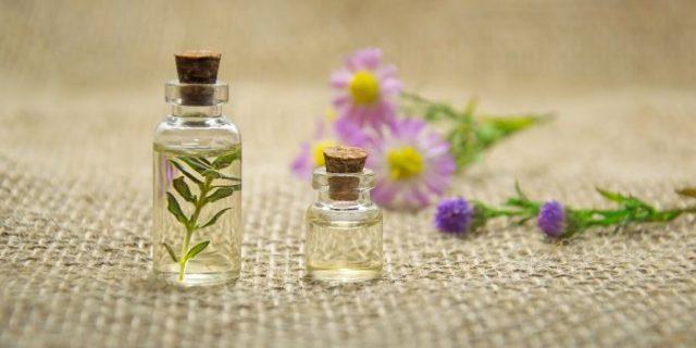 Terpene - mehr als nur Aromastoffe